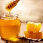 Manfaat madu untuk burung