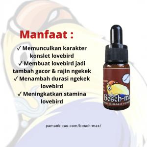 Manfaat Bosch max